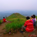 How I Under-Estimated Broga Hill