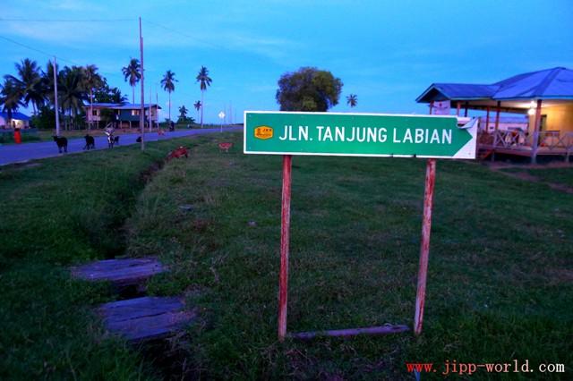 Jalan Tanjung Labian